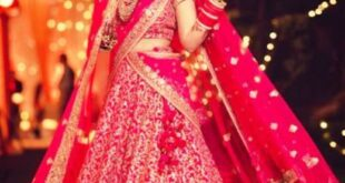 Lehenga Saree Party Wear Design (2)